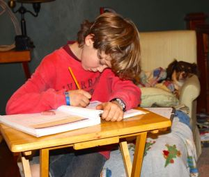 Hunter, all cozy in the background, looking on as JR does his school work.